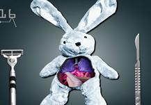 Opera al conejo