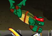 Ninja Turtle Bike