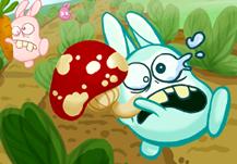 Bunny Bounty